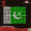 High Quality LED 220V Outdoor Pakistan National Flag for Decoration Lights