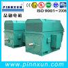 Three Phase High Voltage Food Machinery Motor