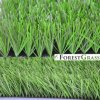 W Yarn Shape Football Field Synthetic Grass with Anti-UV