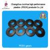 High Temperature Peek Plastic Gear