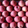 Supplying High Quality Sweet Red FUJI Apple