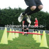 Fitness Soccer Football Exercise Agility Speed Cone Ladder