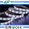 Sample Free CRI90 IP65 8700lm/roll SMD2835 12W/M Silicon Glue Waterproof LED Strip