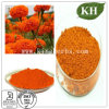 High Natural and Pure Marigold Extract; Lutein 5%, 10%, 20%, 80%, 90%