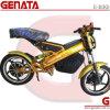 New Super Power Foldable Electric Bike (GM890E2)