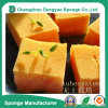 Flower Soilless Culture Sightseeing Agriculture Seeding Sponge