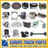 Over 1000 Items Man Diesel Dump Truck Price Auto Parts