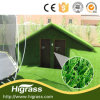 Fire Resistant Turf Artificial for Roof and Wall