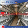 Design Automatic Feeding Drinking Layer Chicken Cage Equipment