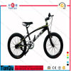 2016 20 Inch Kids Fat Tire Beach Bike Snow Mountain Bike for Kids Bicycle Made in China