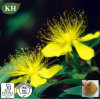 Fructus Forsythiae Extract /Phillyrin 5: 1, 10: 1 /Relief of Depressive Disorder