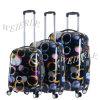 New Design High-Grade PC Trolley Luggage