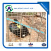 Black Steel Welded Wire Mesh Roll with Best Price