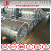 Galvanized Iron Steel Sheet in Coil