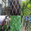 HDPE Plastic Mesh Anti Bird Netting for Greenhouse