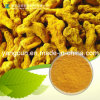 Turmeric Extract Curcumin Powder CAS No.: 458-37-7