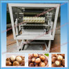 Factory Price Macadamia Nuts Processing Machine