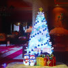 150cm -210cm Christmas Trees with Variou Accessories and LED Light