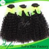 Best Human Hair Curly Hair Weft at The Chinese Suppllier