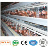 Egg Layer Battery Cages Automatic Equipment