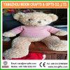 Plush Teddy Bear Pink Sweater