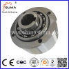 Gfrn55 Linear Ball Bearing One-Way Cam Clutch