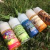 30ml Plastic Bottle E Liquid with Free Logo Design Services