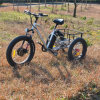 Fat Tire 3 Wheels Electric Trike for Elder