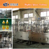 Carbonated Drinks Pet Bottling Machine (DCGN Series)