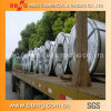 BV Certificated Prepainted Galvanized Metal Steel Coil PPGI