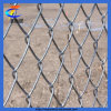 Galvazed/PVC Coated Chain Link Fence