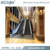 Escalator in Passenger Elevator