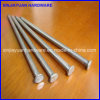 Polished Common Nail, Common Iron Wire Nail with Best Quality