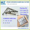 Popular Bright Common Wire Nail for Middle East Market