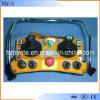 Crane Radio Joystick Remote Control