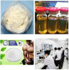 99% D-Mannitol (CAS: 69-65-8) --Manufacturer Direct Sales