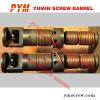 Twin Screw and Barrel
