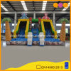 Indoor Water Park Animal Theme Dual Lanes Inflatable Water Slide (AQ01743)