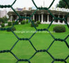 Poultry Iron Wire Mesh/Galvanized Hexagonal Iron Wire Netting