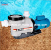 DC Swimming Pool Pump Manufacturer