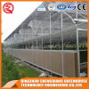2017 Single-Span Plastic Greenhouse with Control Sysytem