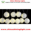 Christmas Holiday Party Decoration LED Holiday Lights