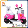 Factory Wholesale Electric Motorcycles for Kids in China