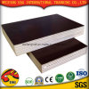 Brown/Black Film Plywood with Good Quality
