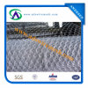 (Hot Sale& Factory Price) Galvanized Hexagonal Wire Mesh