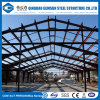 Economical Structural Steel Storage Hanger Building