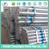 Made in China/Hot Dipped Galvanized Steel Pipe
