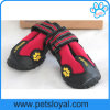 Water Resistant Dog Shoes with Reflective Velcro and Rugged Anti-Slip Sole