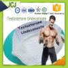 99.9% Testosterone Undecanoate Raw Steroids Powder Testosterone Undecanoate