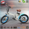 250W Mini Foldable Bike Electric Folding Bicycle for Sale